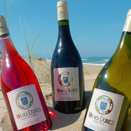 Vin des Dunes